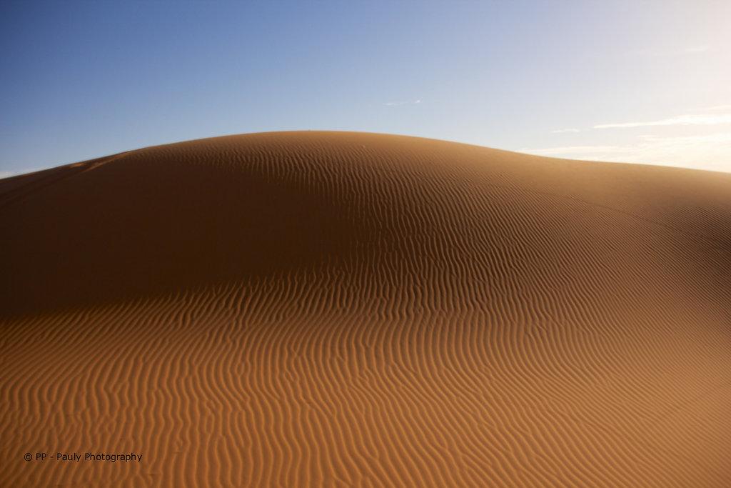 Die Wüste 1